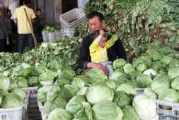 恒达登录地址_晋中:政企联手解救滞销蔬菜