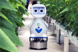 恒达开户测速_福建发布首款人工智能5G农业机器人