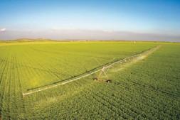 恒达公测_农业科技与祖国共奋进同辉煌