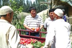 恒达娱待遇_朱为民 博采外来技术之长为上海蔬菜产业保驾护航