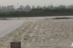 恒达正规么_台风暴雨已致寿光直接经济损失近10亿元 低洼易涝区1.8万个大棚进水