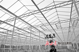 c恒达注册首页_张掖海升现代智能温室工业化生态项目工地上工作人员在加紧施工