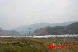 恒达登录_贵州:当地政府高度重视食用菌大棚项目建设