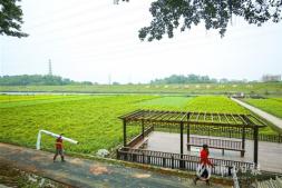 恒达正规么_佛山三水将与华南农业大学合作打造千亩创新型农业产业园区