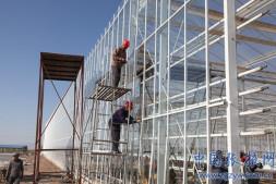 恒达代理平台_张掖海升现代智能温室正在栽植种苗