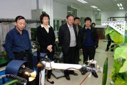恒达注册登录_中国农大黄瓜采摘机器人技术研究通过教育部鉴定