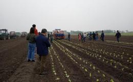 恒达登录_上海举办2019年蔬菜机械化生产工作推进现场会