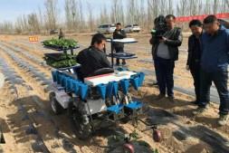 恒达登录_蔬菜定植机械化逐步走向成熟,可减少大量摘菜工人及菜农投资成本!