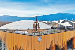 恒达注册账号_北京世园会植物馆—— 红树林搬进北方温室