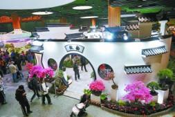 恒达代理平台_31个省区市经典花卉亮相中国馆
