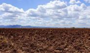 恒达注册登录_重磅!农村土地承包新法通过!土地价值将再翻倍!