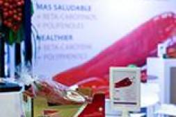 恒达注册登录_荷兰育种公司Axia首次推出甜味尖椒品种
