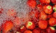 """恒达招商_专家提醒:教你如何提高草莓""""颜值""""!"""