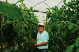 """顶天立地的""""西瓜大王""""—记北京市农林科学院蔬菜研究中心主任许勇"""