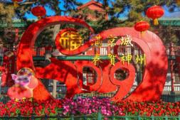 恒达公测_北京市属公园花卉迎春 领略盎然春意