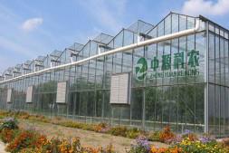 恒达信誉吗_现代设施农业与田园综合体之——温室大棚