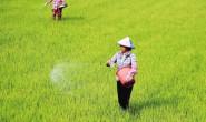 恒达登录_我国微生物肥产量预计将翻番(图)