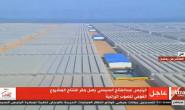恒达平台登录_中埃西三国合作实施温室大棚落成 助力埃及农业发展
