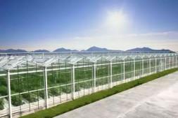 恒达娱乐_现代农业如何赚钱,直击设施农业五大痛点!