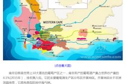 恒达注册_南非葡萄加强在中国市场推广 本季产量有望创新高