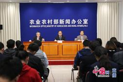 恒达娱待遇_农业农村部就第三季度主要农产品市场运行形势举行发布会
