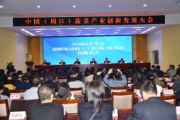 恒达娱乐_中国(周口)蔬菜产业创新发展大会在扶沟召开