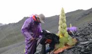 恒达注册账号_首部国产大型植物类纪录片《改变世界的中国植物》杀青