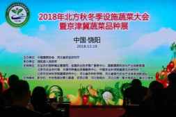 恒达开户测速_2018年北方秋冬季设施蔬菜大会在河北饶阳召开
