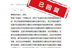 恒达开户测速_借鉴:基本农田不能建大棚?广东官方回复
