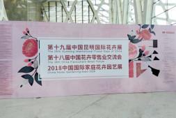 恒达注册_第十九届中国昆明国际花卉展圆满闭幕