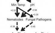 恒达平台_武汉植物园在植物入侵与土壤微生物纬度梯度格局研究中获进展