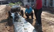 恒达招商_北京:探索西瓜移栽机械化技术