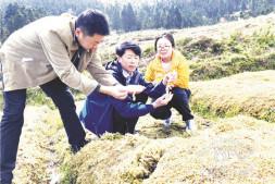 c恒达注册首页_孟宪民:我国水藓产业发展现状(上)