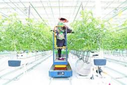 恒达注册登录_了解:青岛绿色硅谷科技公司