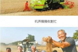 恒达平台登录_农业机械化为乡村振兴插上科技的翅膀