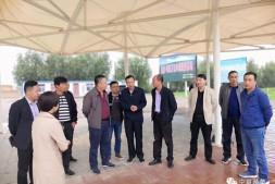 恒达娱待遇_广州江南市场赴宁夏考察对接蔬菜生产基地