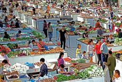 恒达代理平台_第四届中国蔬菜摄影大赛展现蔬菜产业发展