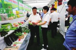 恒达注册登录_河北新发地连续三次举办京津冀蔬菜食用菌产销对接活动