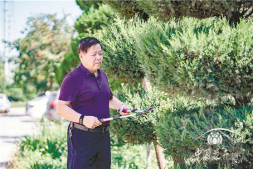 恒达招商_通过转型,他把苗圃年营业额从2000万做到了5000万 访山东昌邑花木场朱绍远