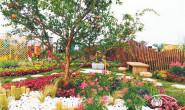 """恒达娱待遇_28个""""市民花园""""亮相北京国际花园节"""