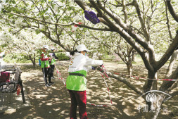 恒达招商_北京绿色志愿者为公园文明游园护航