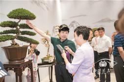 恒达开户测速_如皋盆景惊艳北京世园会