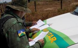 恒达注册账号_巴西政府宣布禁火令 亚马孙森林大火抗灾形势严峻