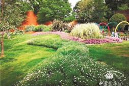 c恒达注册首页_什么样的花境景观会更受欢迎?