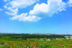 恒达注册平台_北京南中轴11个绿化项目年内建成