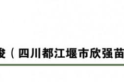 """恒达信誉吗_""""2018年度全国十大苗木经纪人""""评选结果公示"""
