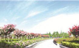 恒达代理平台_中原地区植物基因库 记河南郑州植物园