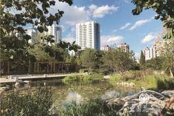 """恒达公测_北京亚运村:首个""""小微湿地""""亮相"""
