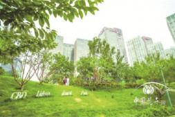 c恒达注册首页_北京CBD建首个城市森林公园