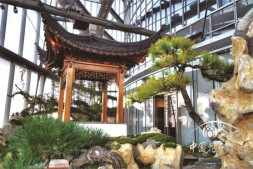 恒达正规么_世界最高室内中国园林 上海半亩园正式对公众开放